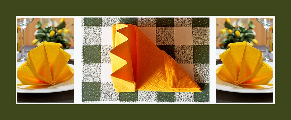Papierservietten falten Fächer schnell und einfach  Video