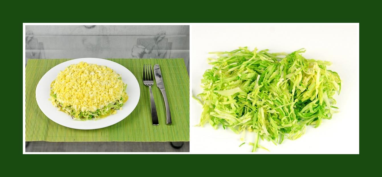 Frühlingssalat mit jungem Kohl Weißkohl