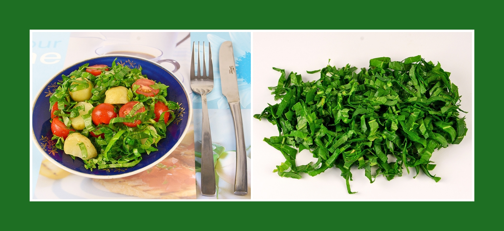 Sauerampfer für Kartoffelsalat