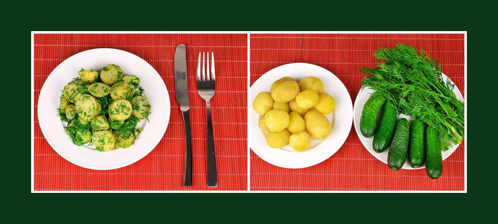 Einfacher Salat oder originelle Beilage aus Frühkartoffeln, Gurken und Kräutern