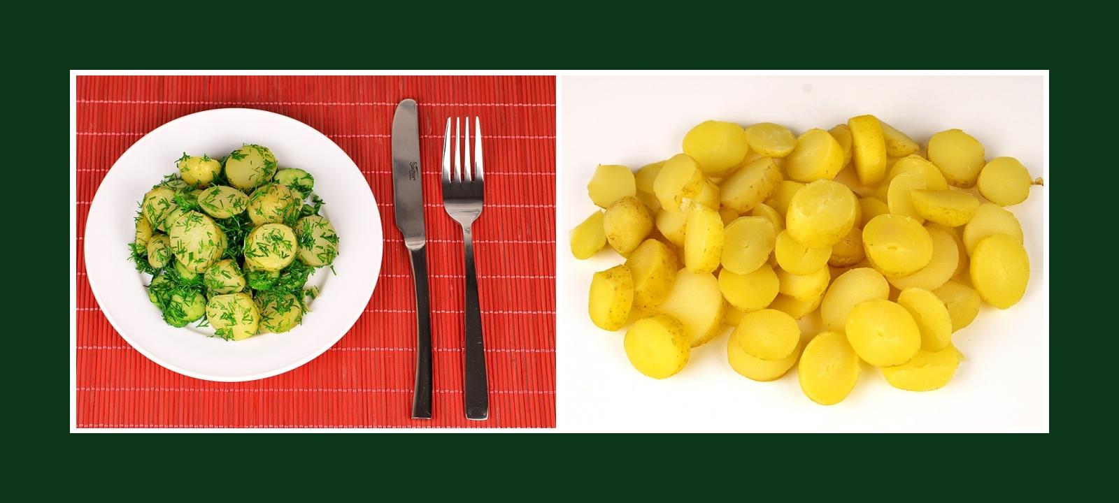 Frühkartoffeln für einfachen Salat